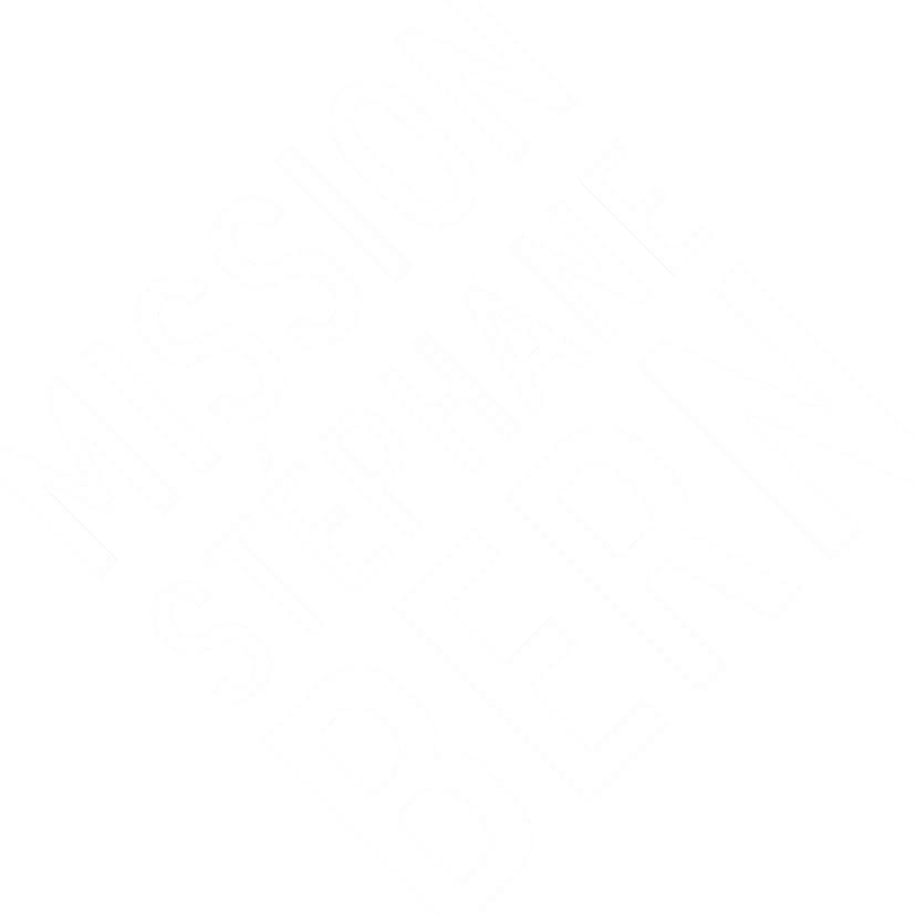 Mission Bern - Logo